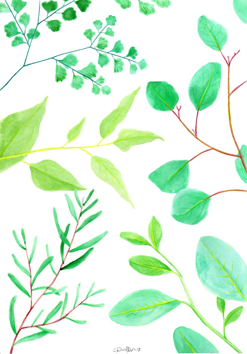 Reaching Leaves.jpg