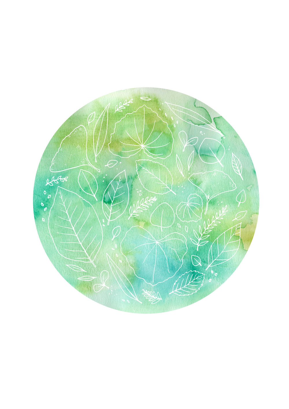 Nature Mandala Colour