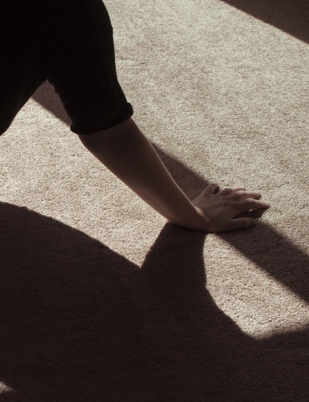 shadow_11crop.jpg