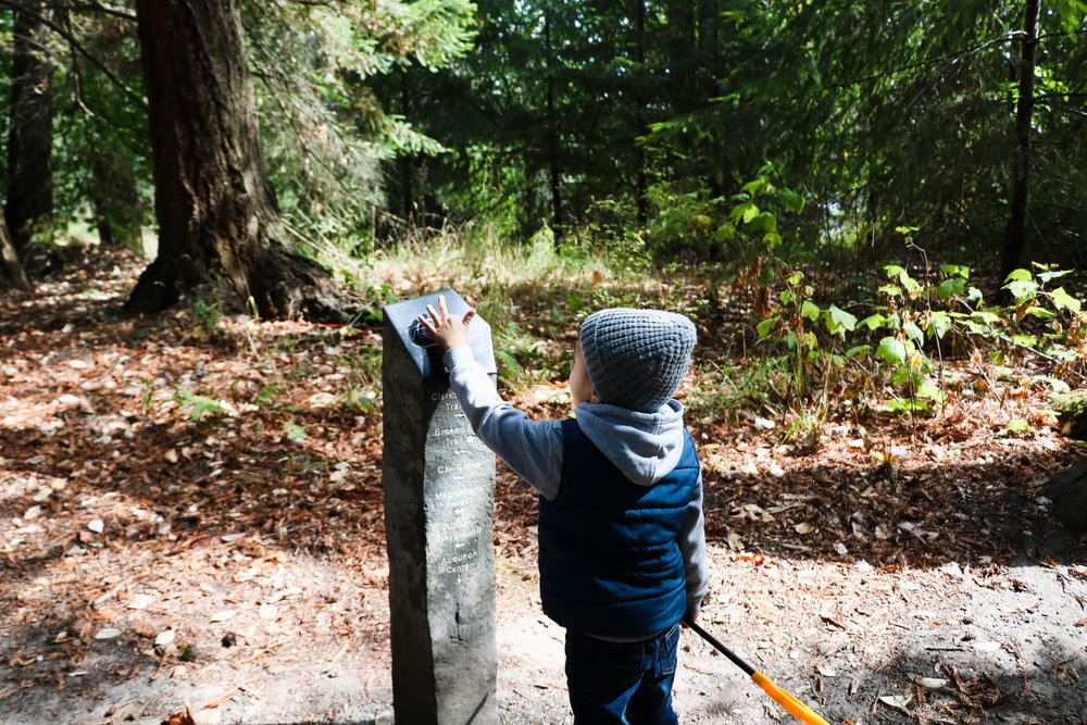 ADVENTURES - A HIKING WE WILL GO — All Kids Are Gifted