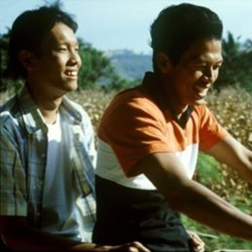 TROPICAL MALADY (Apichatpong Weerasethakul, 2004)  Duke of York's Picturehouse.   14/09/15