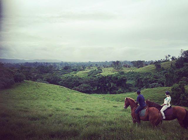 Even when the sun is tucked away, Bellevue Ranch pulls out the most spectacular views (and even better on horseback 👌🐴) Clouds or sunshine, we are certain you won't regret coming for a ride and exploring Vanuatu on horseback!  #rainforest #discovervanuatu #vanuatu #horses #horseriding #travel #adventure #holiday #tour #beauty #view #bucketlist #fun #family #exciting #amazing  @breakasresort @vanuatuislands @holiday_inn_resort_vanuatu @iririki @coconut_palms @wotz_on_vanuatu @vanuatuluxuryholidayhomes @papayavillavanuatu @benjor_beach_club_vanuatu
