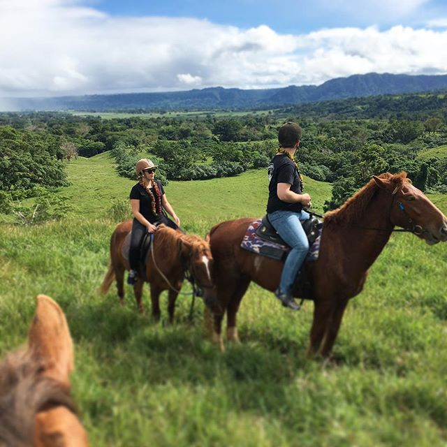 A gorgeous 📷 taken by some of our recent guests whilst out on the rainforest ride 🐴  The rainforest ride takes you all the way through the Bellevue plantation....weaving between coconut trees and then hitting the plateaus where you get stunning views over the lagoon and harbour 😍  #bellevueranchvanuatu #discovervanuatu #vanuatu #tropical #paradise #holiday #horseriding #trailriding #views #stunning #explore #adventure #tour #nofilter #picoftheday