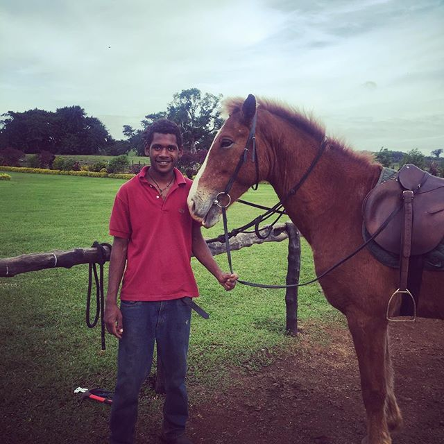"Here is Fraiser getting one of our trusty steeds ""Johnny"" ready for a ride. Johnny is just one of the many horses that you might meet out at Bellevue Ranch 🐴 Renown for his lovely gentle nature and extremely comfortable ride, Johnny is perfect to explore the ranch on!  Book now!  #tour #travel #discovervanuatu #vanuatu #horses #horseriding #fun #explore #trailriding #adventure #wakeupinvanuatu  @holiday_inn_resort_vanuatu @iririki @warwickvanuatu @fatumarulodge @sunsetbungalows @poppysonthelagoon @coconut_palms @vanuatuislands"