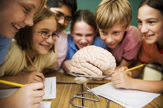 Elementary School STEM Science Units