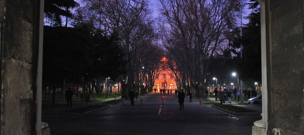 University x