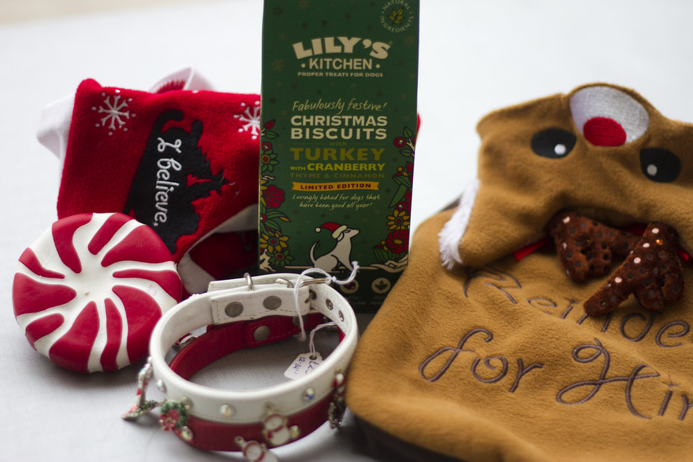 Your Dog Is Part Of Your Family So Don't Leave Him Off The Christmas List! 1