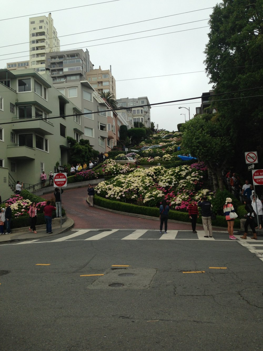 san_francisco_windy_city_what_to_do_what's_on_lombard_street_elle_blonde_luxury_lifestyle_blog