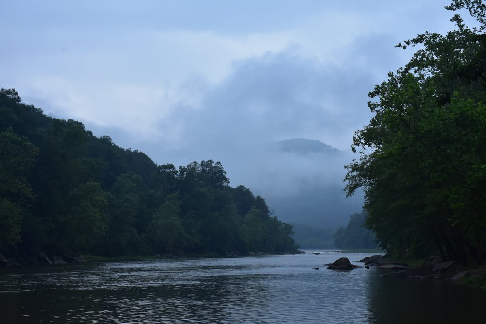 New River, July 2015.