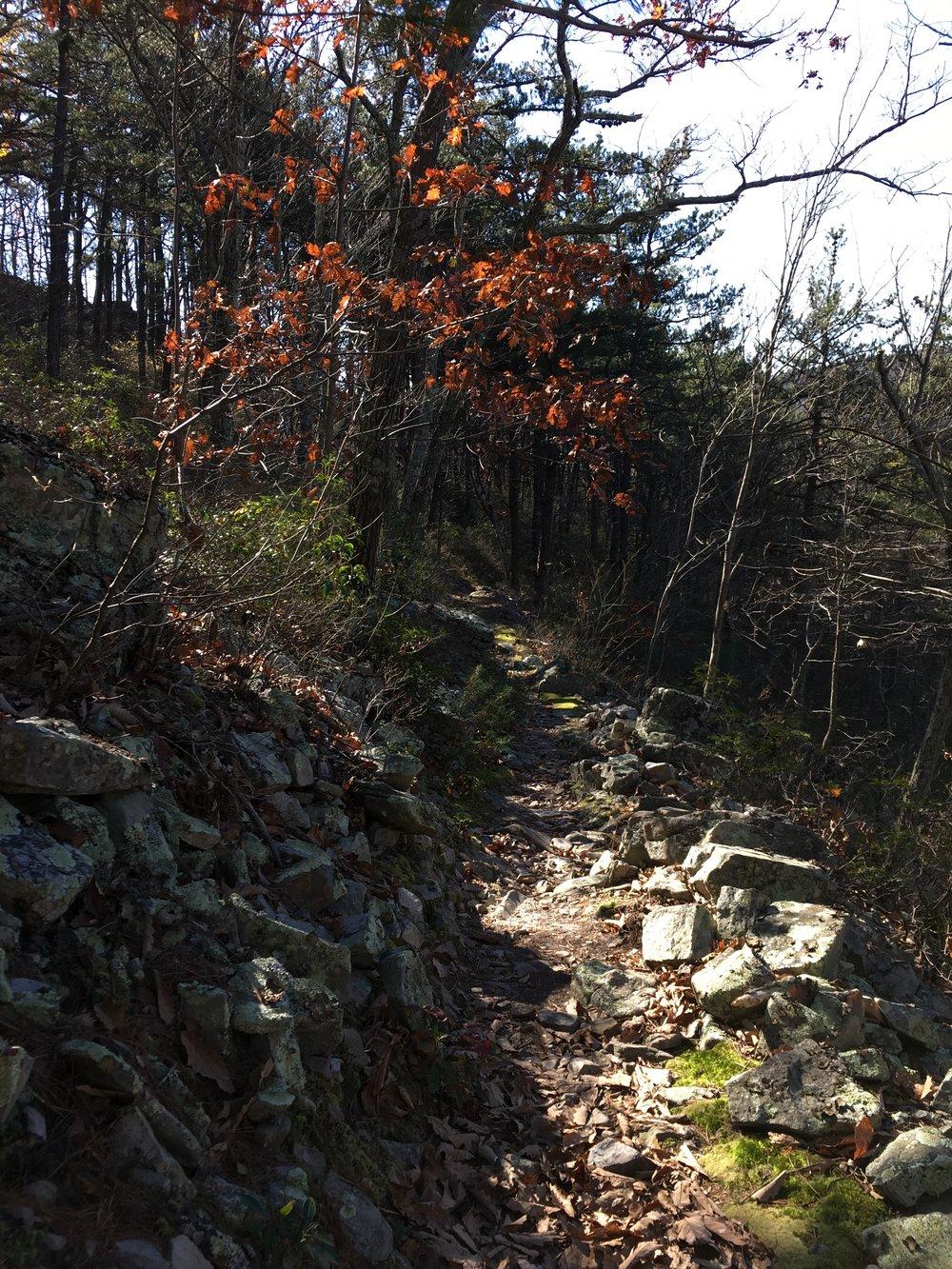 Chic-Stripes-Travel-Hone-Quarry-Virginia-4