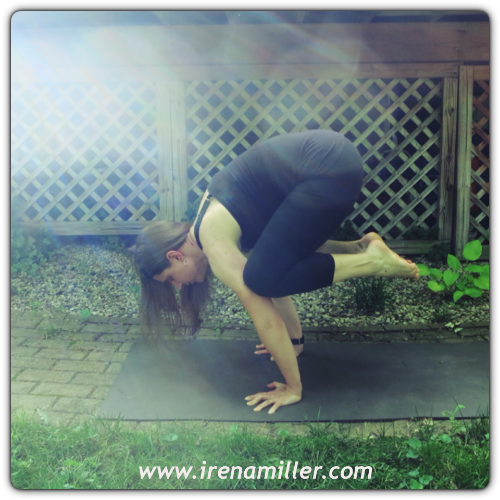 bakasana crow yoga pose