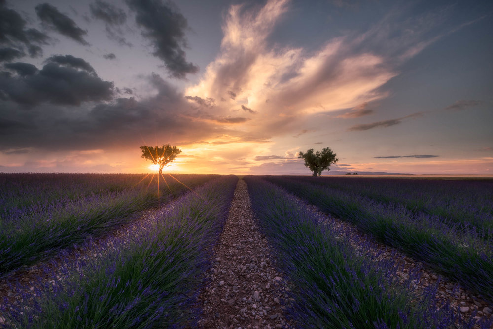 Wonders Of Provence
