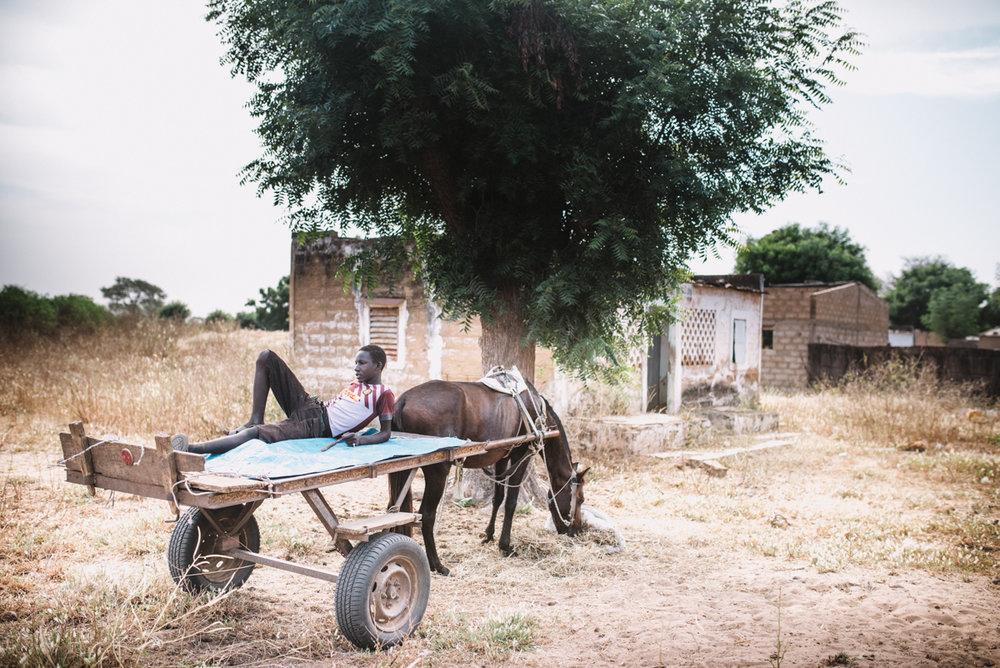 viaje-a-dakar-2504.jpg
