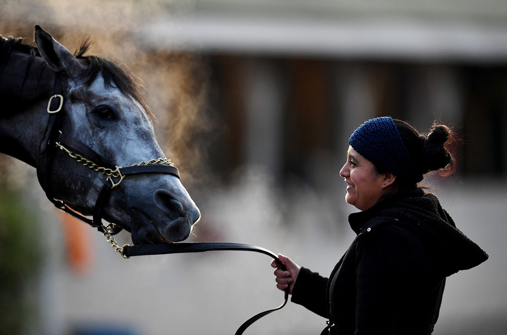 Isabell Pasquale holds on to Stiqua during a washing. Pasquale has been working at Churchill Downs for one year. Hot walkers like Pasquale are mainly tasked with walking horses after workouts.