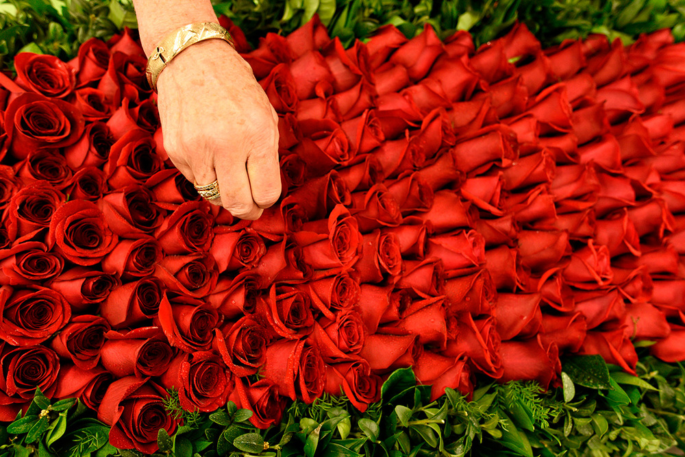 Project coordinator Cathy Sheppard puts the finishing touches on the garland of roses that will be draped over the winning Kentucky Derby horse. The garland is hand-stitched at Kroger, a local grocery store in Louisville.