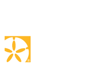 Denise Greene REALTOR®
