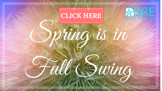 Spring is in Full Swing