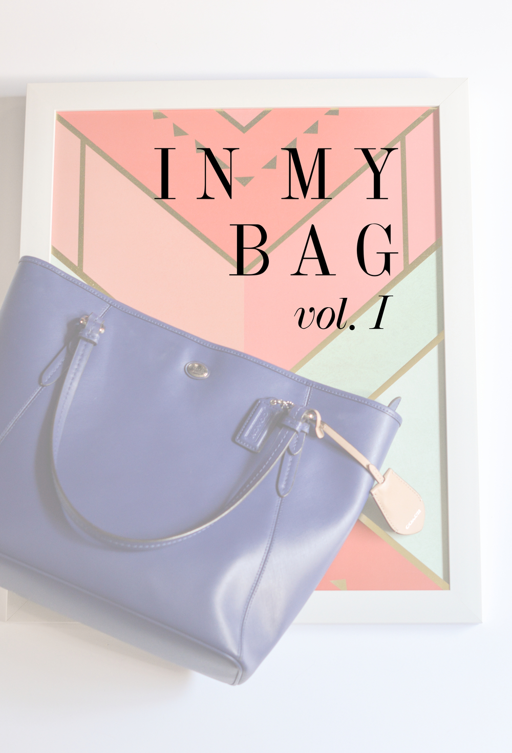 in_my_bag1