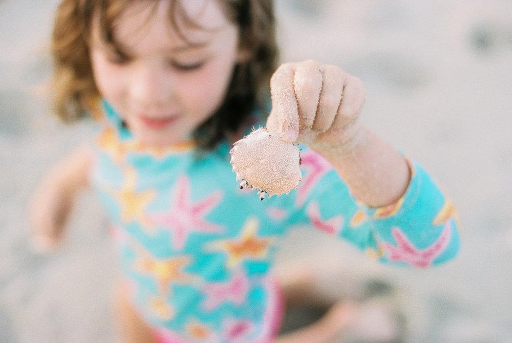 Maryland-Delaware-Beach-Lifestyle-Photographer-Lewes-Photos-By-Breanna-Kuhlmann-9.jpg