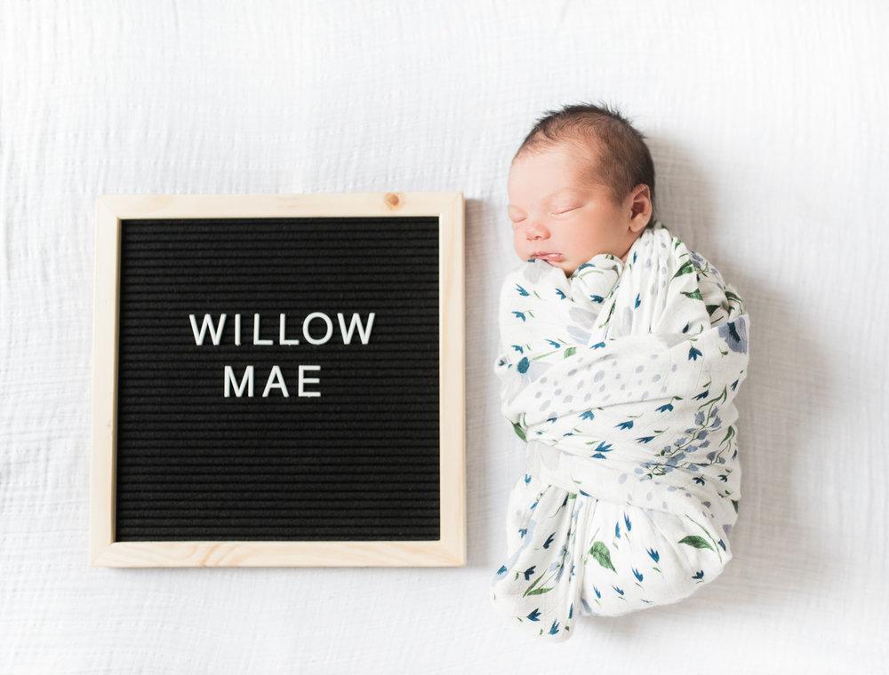 Baltimore-Maryland-Newborn-lifestyle-photographer-breanna kuhlmann-35.jpg
