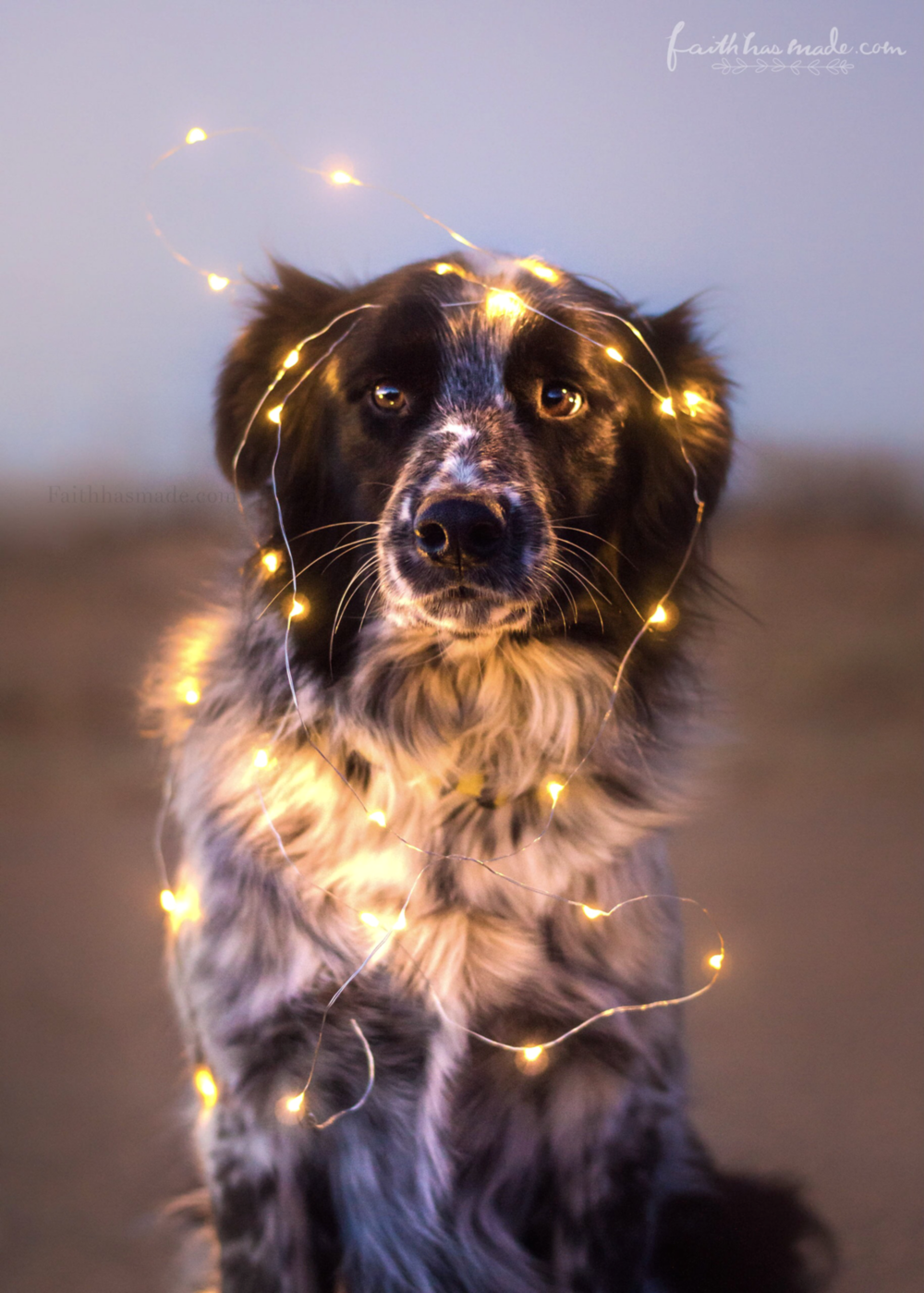 Ike Lights.png
