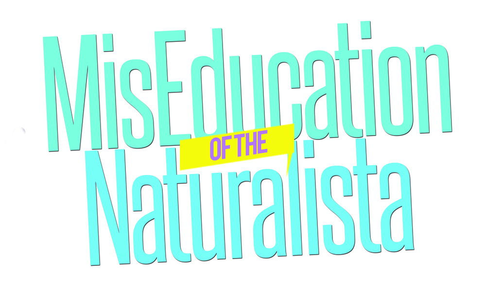 MisEducationLogo.jpg