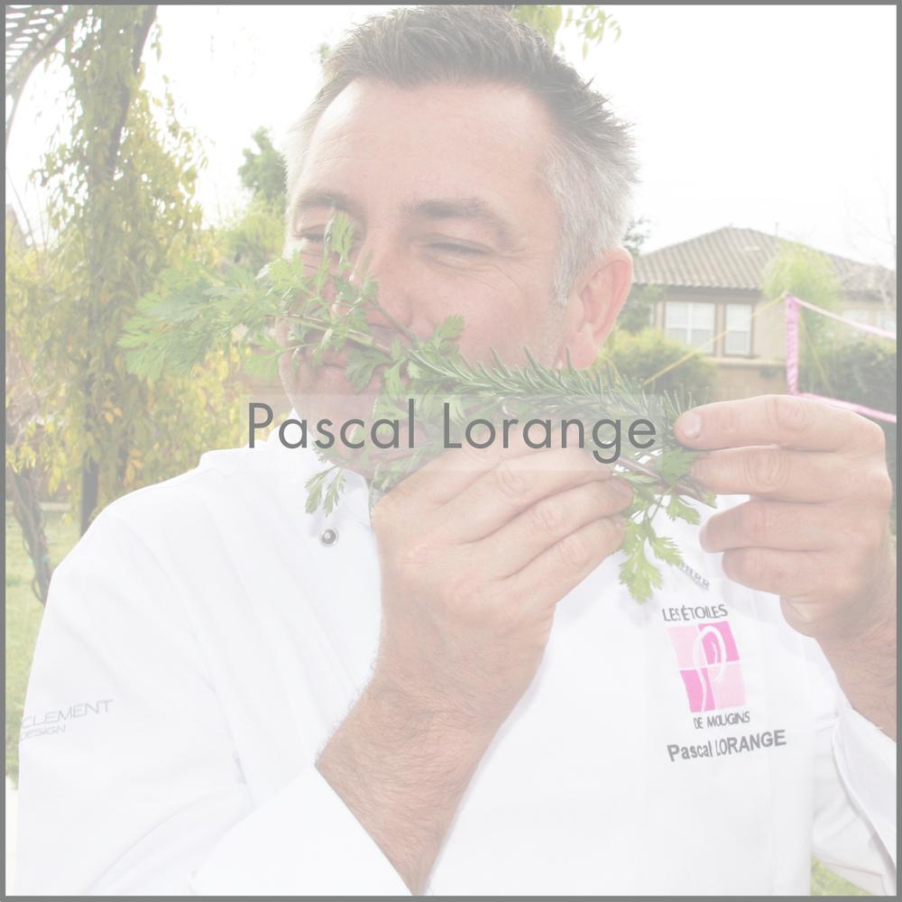 Crudo_Images_HomePage_Pascal_2.jpg