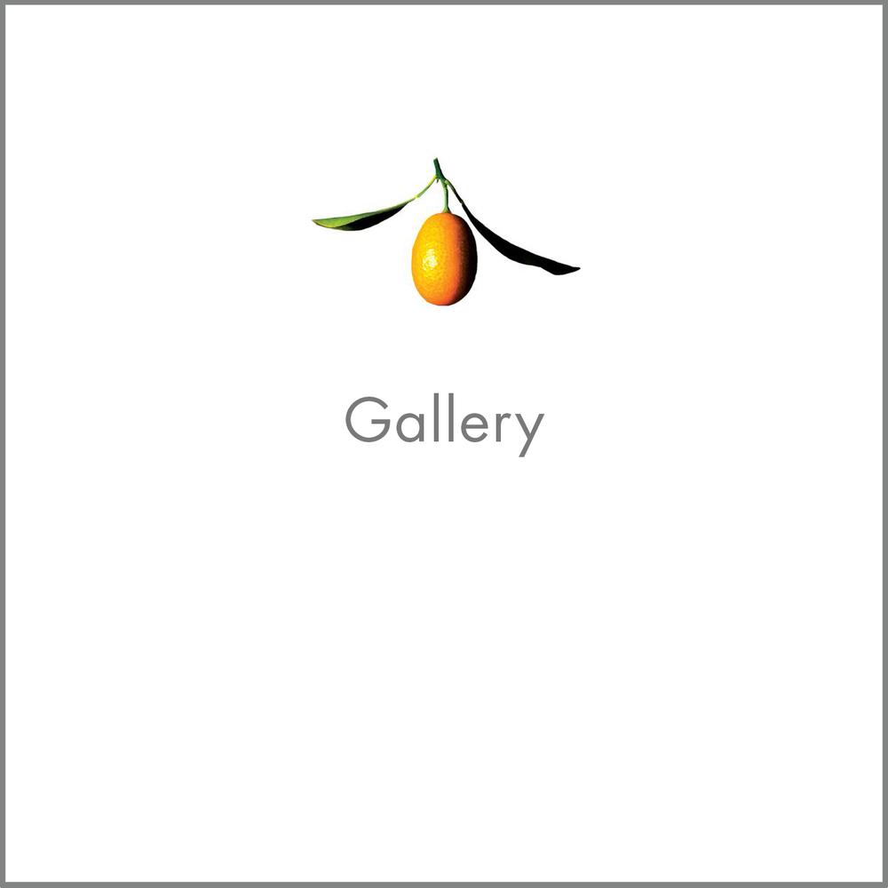 Crudo_Images_HomePage_gallery_2.jpg