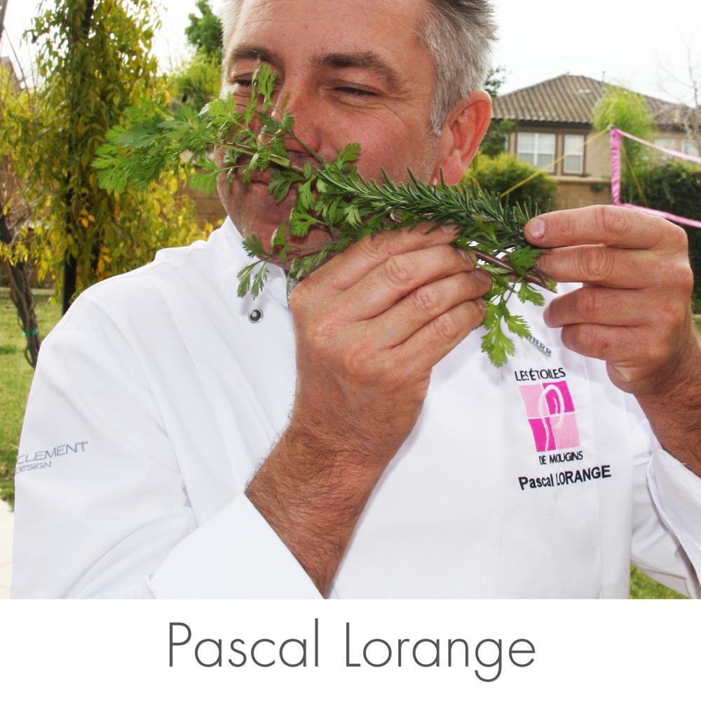 Crudo_Images_HomePage_Pascal_Design5.jpg