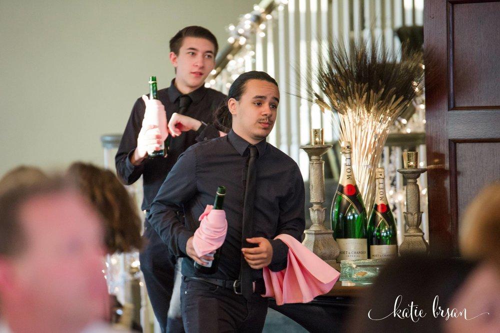 Mokena_Lemont_Wedding_Ruffled_Feathers_Wedding_1414.jpg