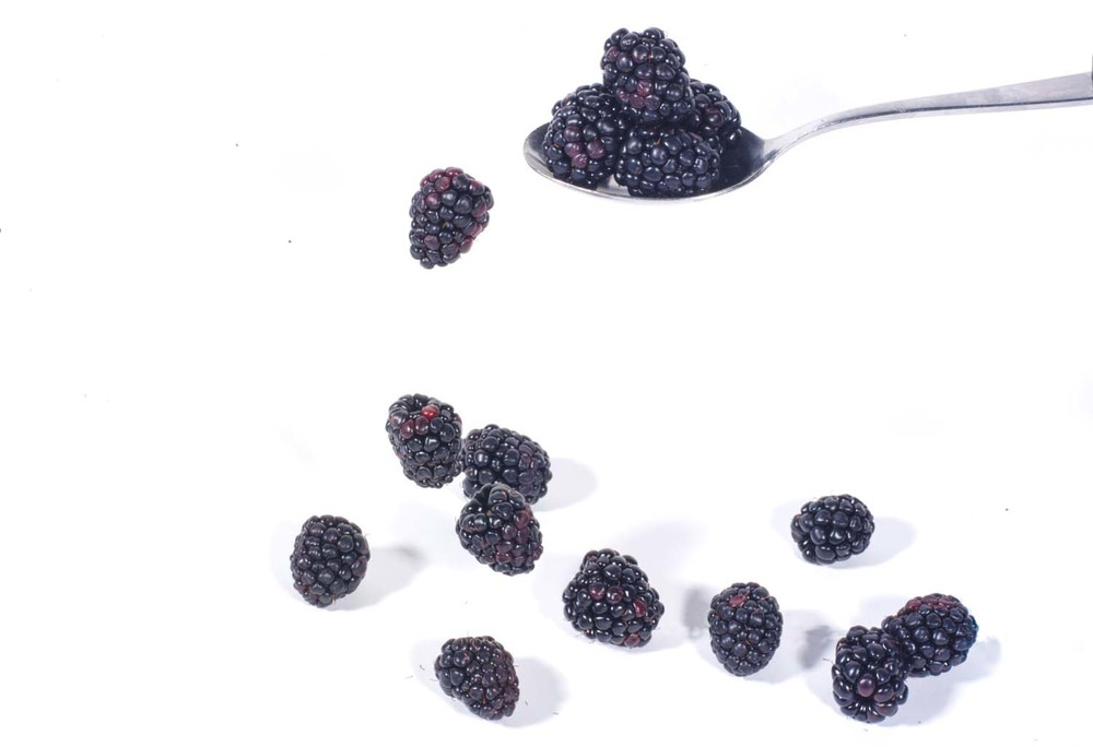 Falling Blackberries