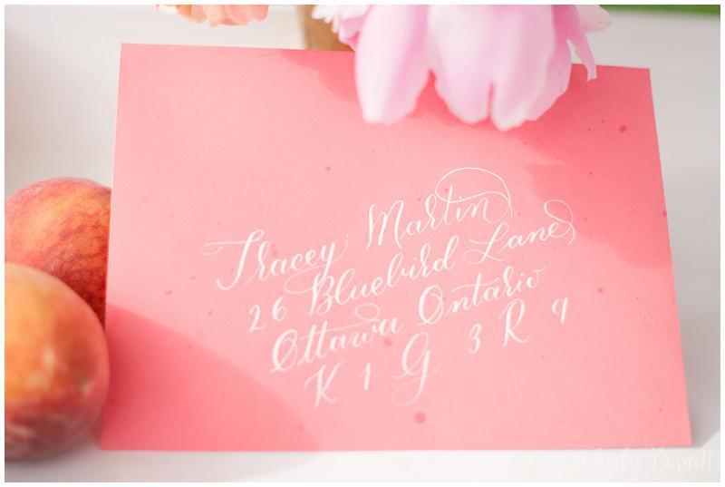 Charlie-Barnett-Photography-Ottawa-Wedding-Photographer