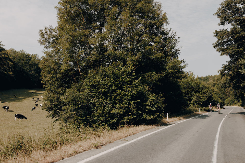 road with cyclist