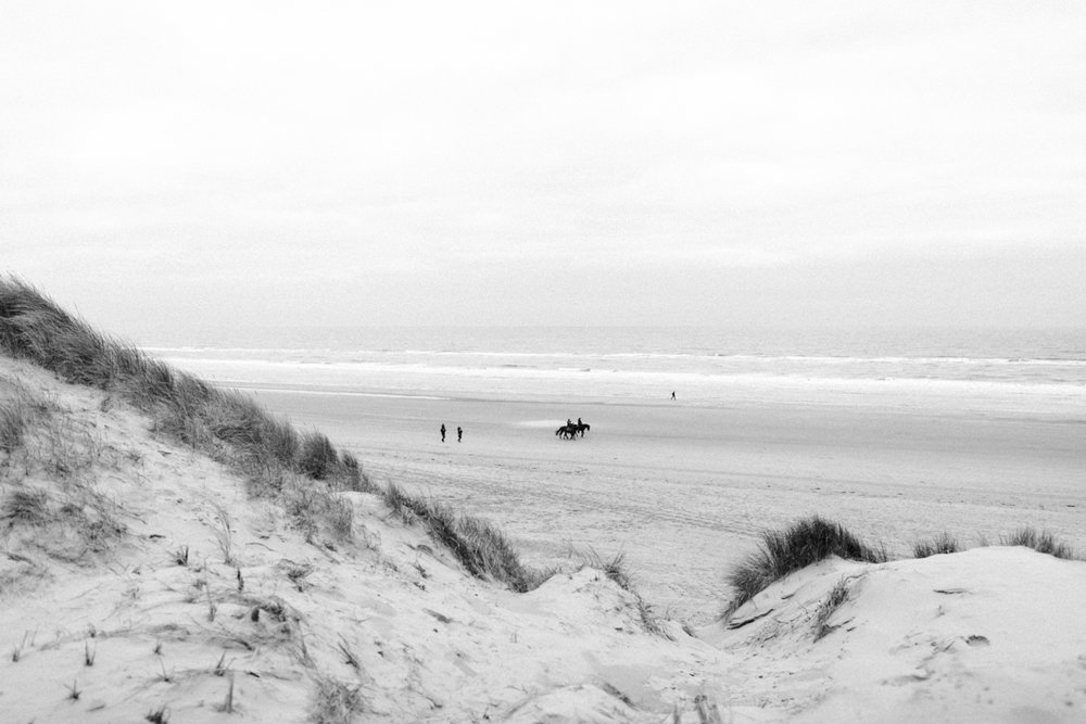 Dunes and beach of Bloemendaal