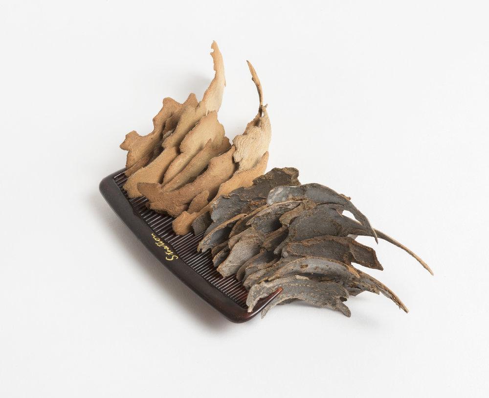 Bark Comb