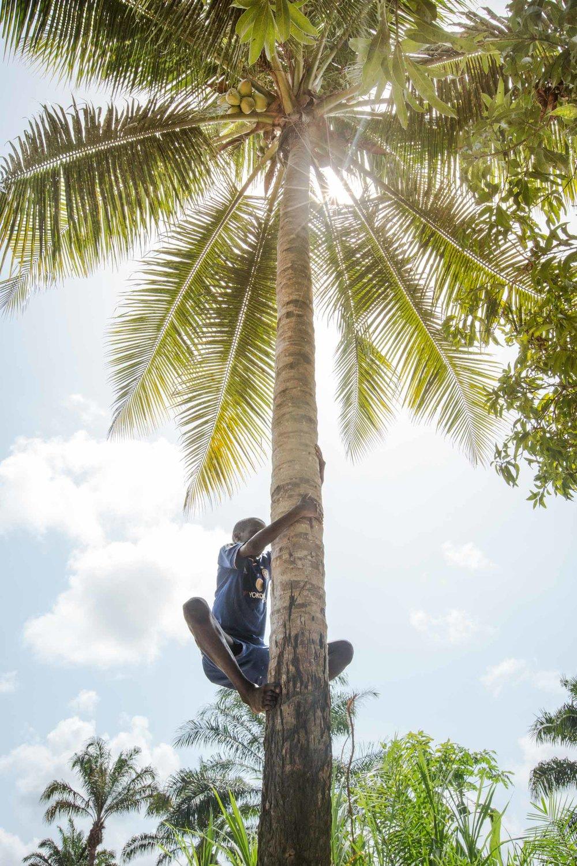 Benin-20.jpg