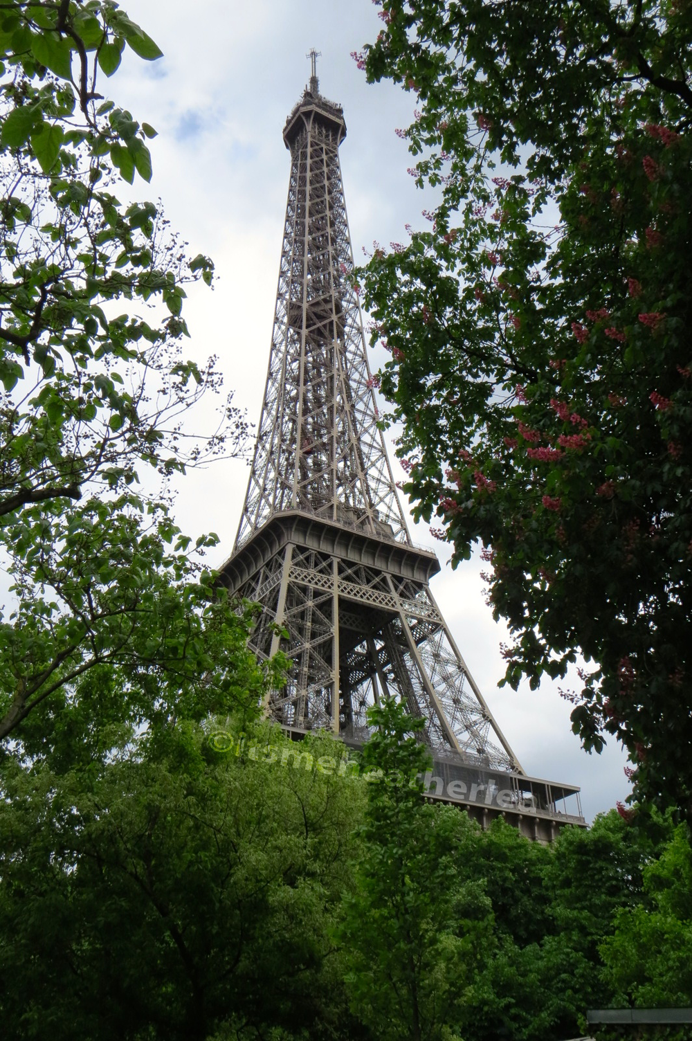 The Eiffel Tower in Spring in Paris, France