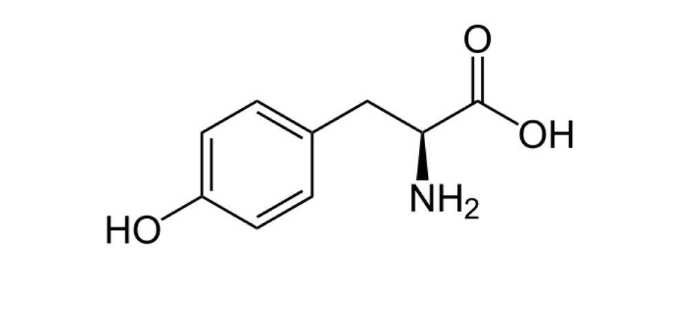 Tyrosine -