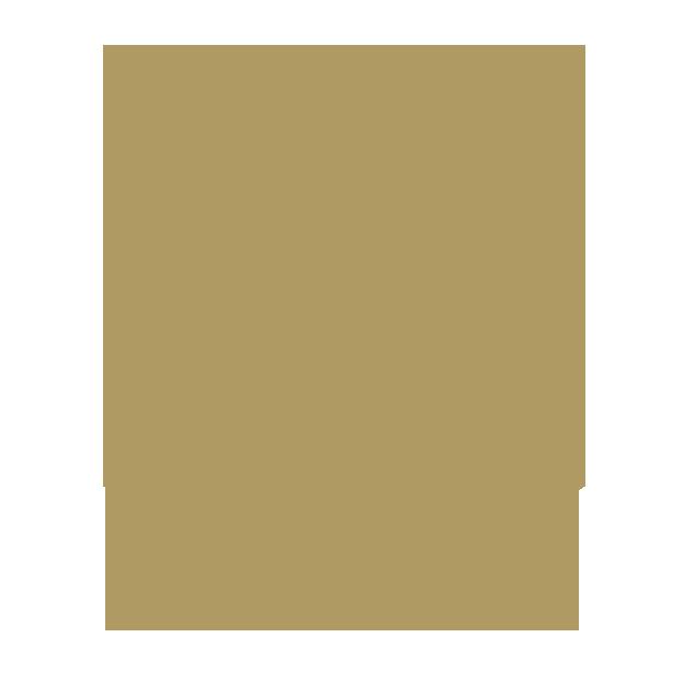 Divorce To Dream Embrace The Lion