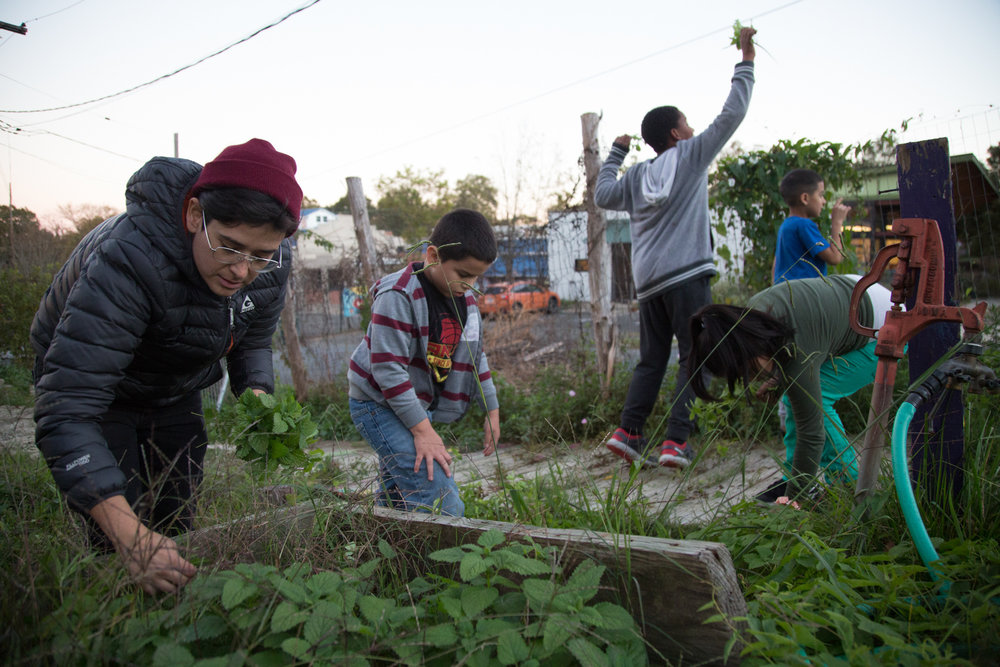 Leslie Simonds, the Programs Manager at SEEDS, picks lemon balm with Adonis Leon, Bayron Rodriguez, Nyles Perry and Heidy Lopez during the after-school program. This lemon balm has a sweet, citrus smell and will be used to make tea.