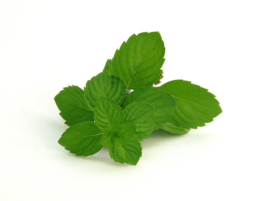 Spearmint-Flavour-E-Liquid
