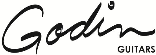 Godin logo thck blk_hirez.jpg