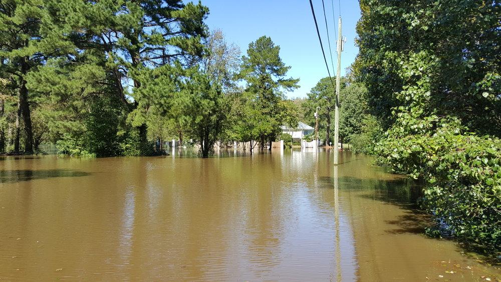 Hurricane_Matthew_aftermath,_Greenville,_NC,_flooding_-_3.jpg