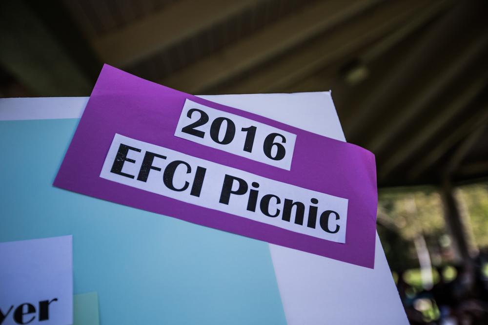EFCI Picnic Poster