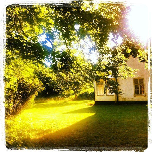 Den här bilden tog jag många år innan Fredriksberg blev till salu. Det är en liten bit av flygeln, verandan och den magiska grönska som omger gården. Bilden förvarade jag på ett tryggt ställe i min mobil och tog fram och tittade på lite då och då. För mig har denna bild blivit symbolen för att allt är möjligt!