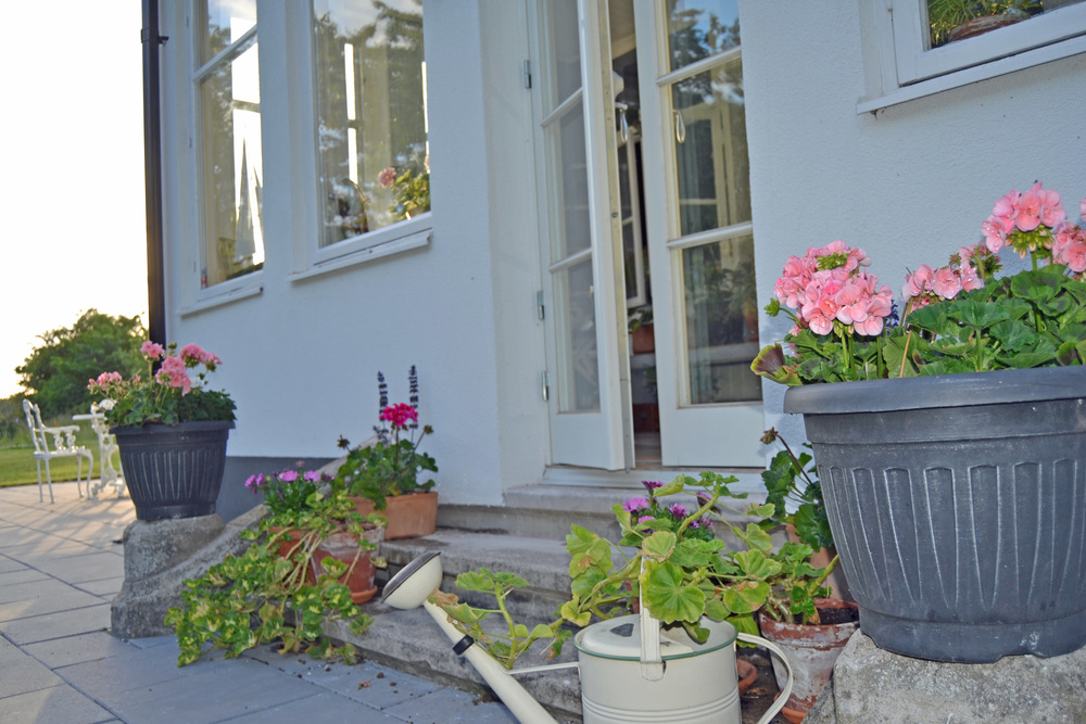Ett litet sommarprojekt blir att måla resterna av den forna balustraden vit... På dem ska det sedan stå pampiga, vita urnor med blommor i.