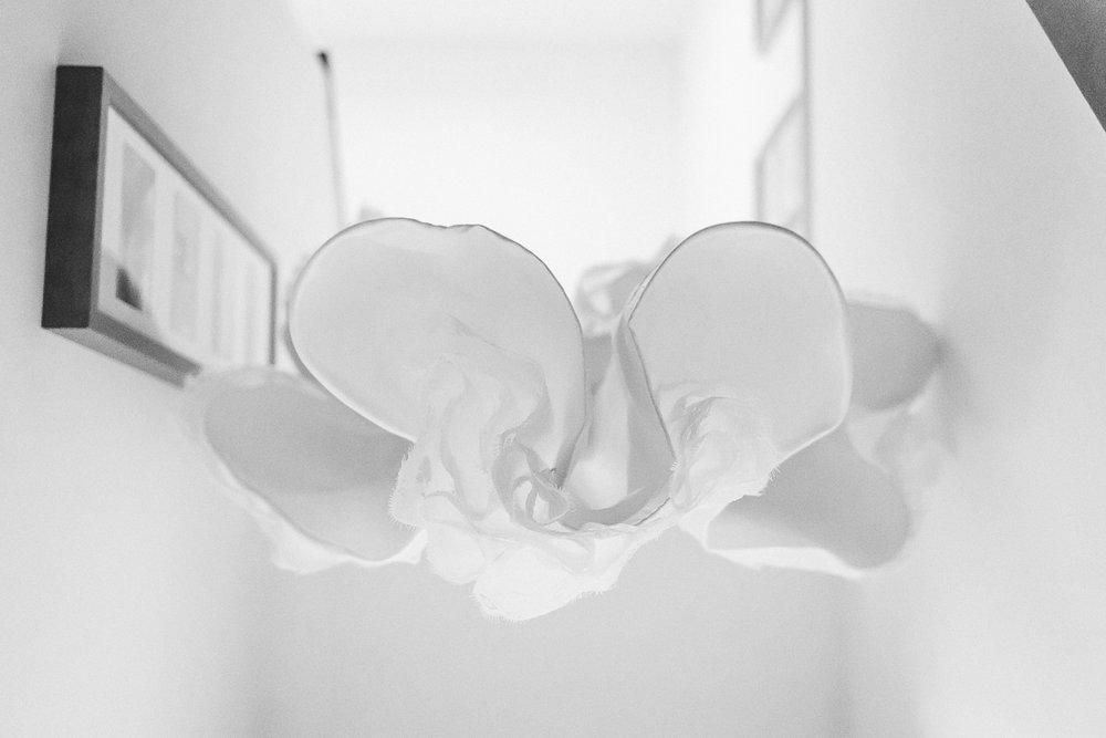 Lucie Hamilton Photography-188.JPG