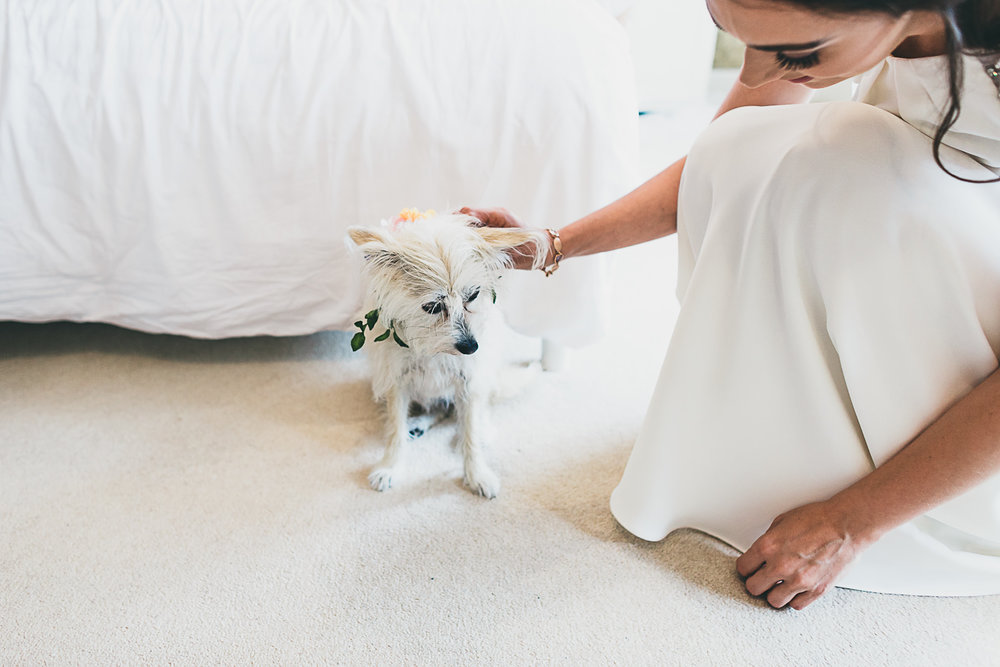 D&C | Matara Wedding Photography-100.JPG
