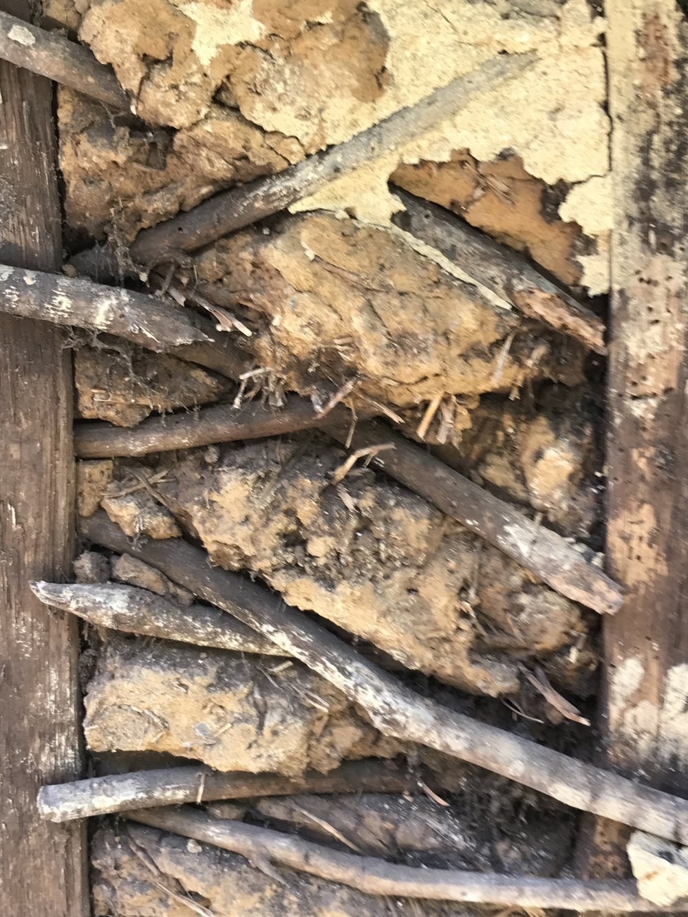 Existing wattle and daub