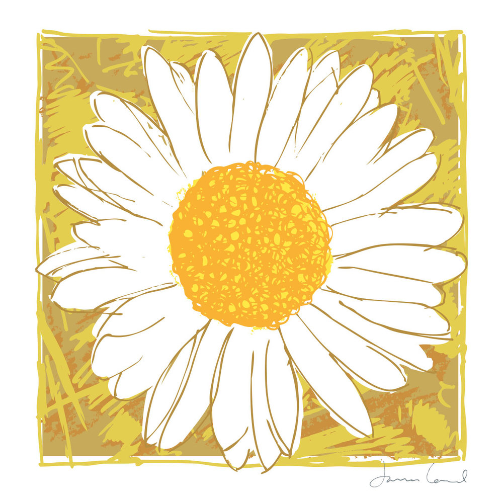 james-lord-arty-card-daisy.jpg